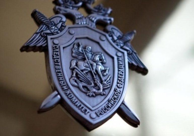 «Бессмертный полк» направит данные провокаторов в Следственный комитет