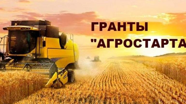 Оренбургская область получит дополнительные средства на поддержку фермеров
